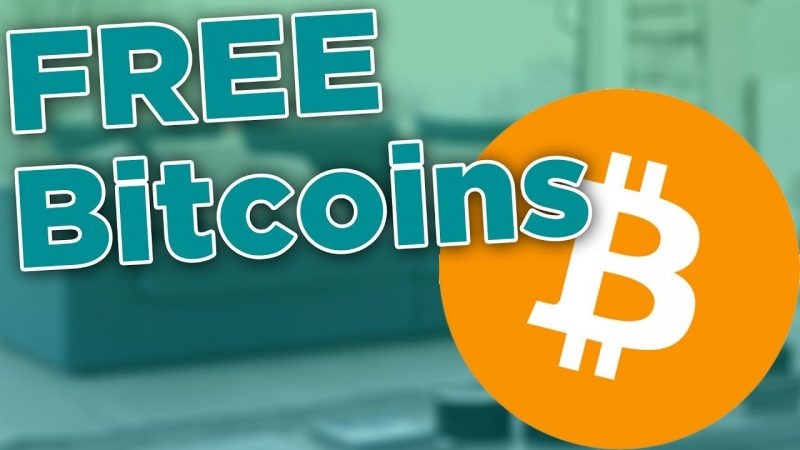 PrimeDice Bot | Free Bitcoin Bot